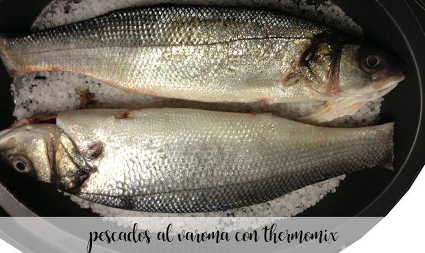 25 ryb varoma z termomiksem