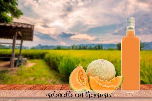 Meloncello - Likier melonowy z Thermomixem