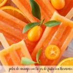 pomarańczowe lody z kawałkami owoców z termomiksem